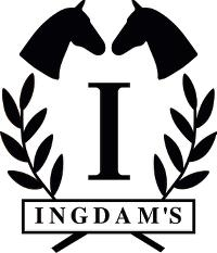 INGDAMS ApS logo
